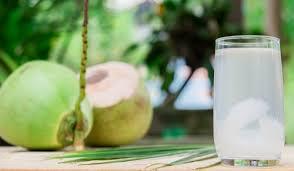 Manfaat Meminum Air Kelapa Muda